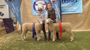 Zac holding VV160/16 First Ewe Lamb and Sally holding VV69/16 Second Ram lamb Bendigo ASBA 2016